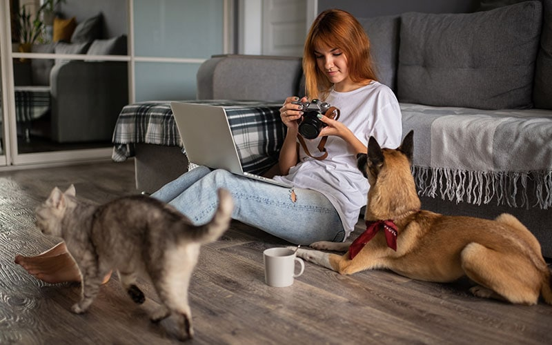 How to Get Great Photos of Your Pets